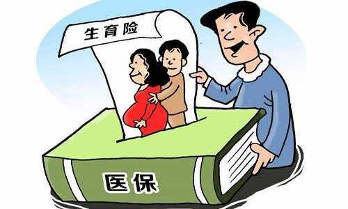 武汉生育保险能报多少钱